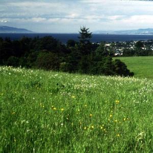 Pogonip Greenbelt located in NW Santa Cruz, CA